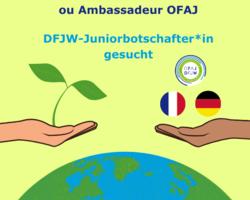 Devenez Jeune Ambassadrice Ou Ambassadeur OFAJ DFJW Juniorbotschafter In Gesucht