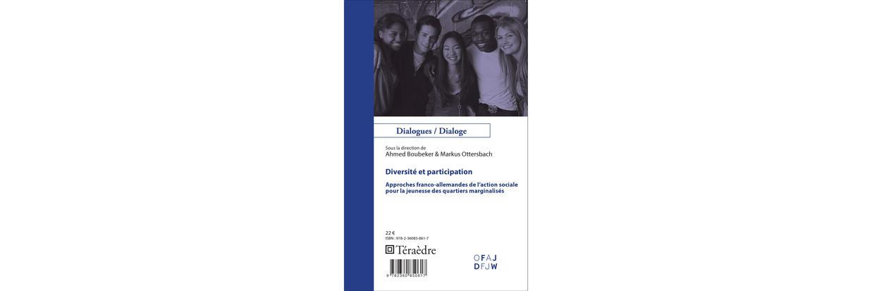 Diversit Et Participation Approches Franco Allemandes De L Action Sociale Pour La Jeunesse Des Quartiers Marginalis S