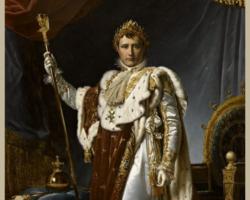 Napoleon AAP